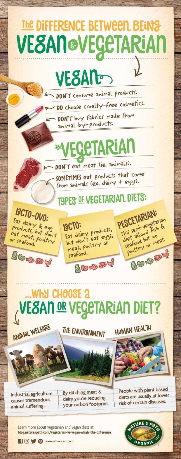 Vegan vs Vegetarian.jpg